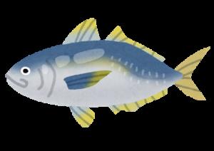 アジやウナギなどの魚